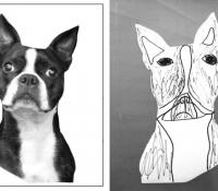 dogheadfotoplaybymjbronstein2