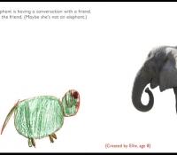 elephant-conversation-marcie-bronstein