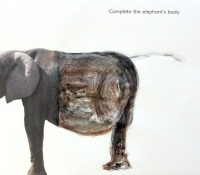 elephant-fotoplay-bronstein-workshop2
