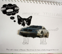 fotoplay-cat-car-bronstein