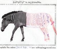 fotoplay-marcie-jan-bronstein-inthisplayground-zebra-2