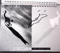 fotoplay_hospital_marcie_j_bronstein_minimalism_4-copy-copy