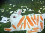 fotoplay-rabbit-m-j-bronstein