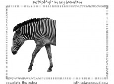 marcie-jan-bronstein-fotoplay-1-zebra
