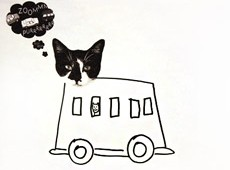 Cat Car Fotoplay M J Bronstein CMCA Book signing thumb