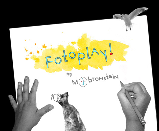 Fotoplay M J Bronstein Chronicle Books