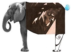Kepets Bronstein Fotoplay Elephant collage
