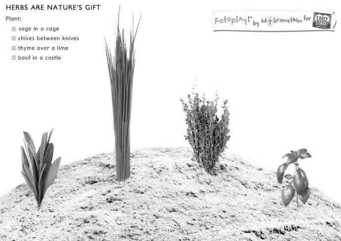 FOODSMART-Fotoplay-Bronstein-Herbs3a