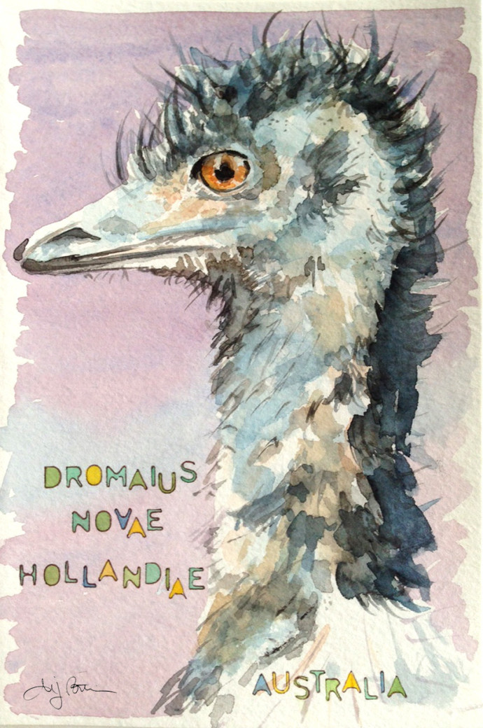 australia_emu_m.j.bronstein-watercolor
