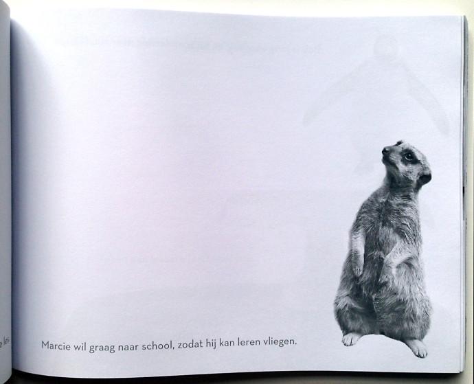Het-Enige-echte-fotodoodleboek-bronstein-meercat