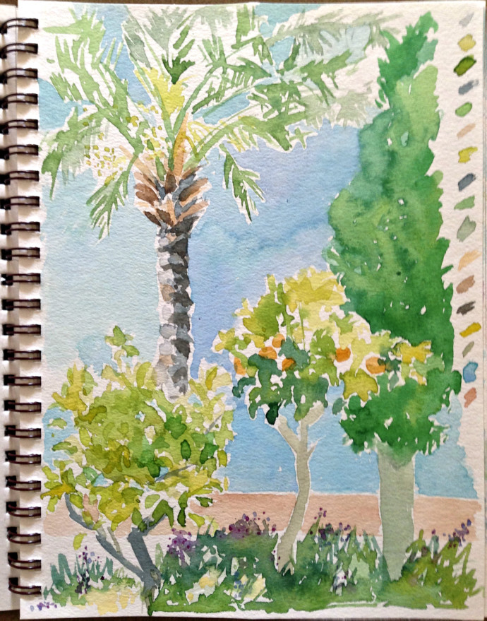 marcie-bronstein-watercolor-kusadasi-palm
