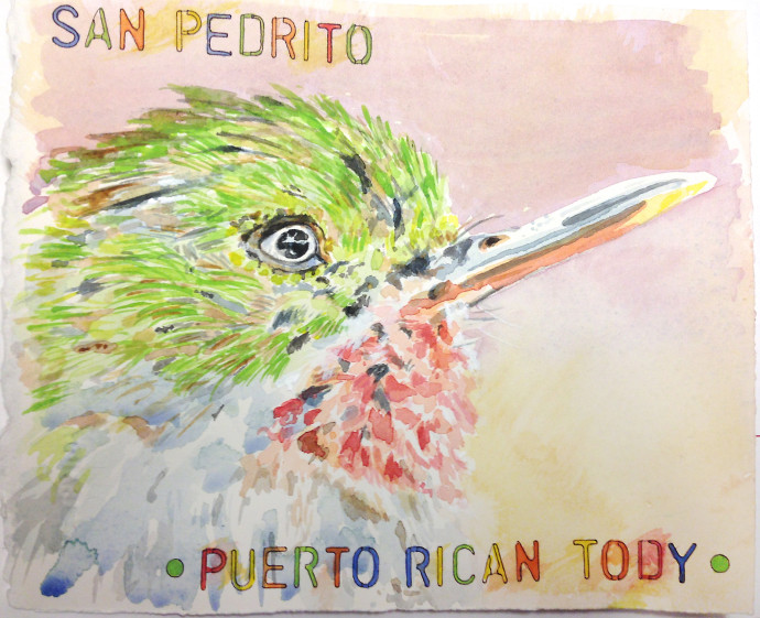 M.J.Bronstein-Puerto-Rican-Tody-watercolor