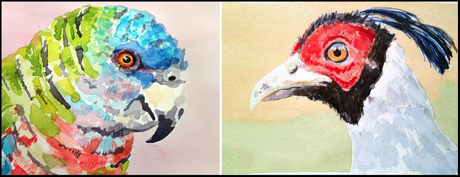 Mattina_Blue_birds_watercolor