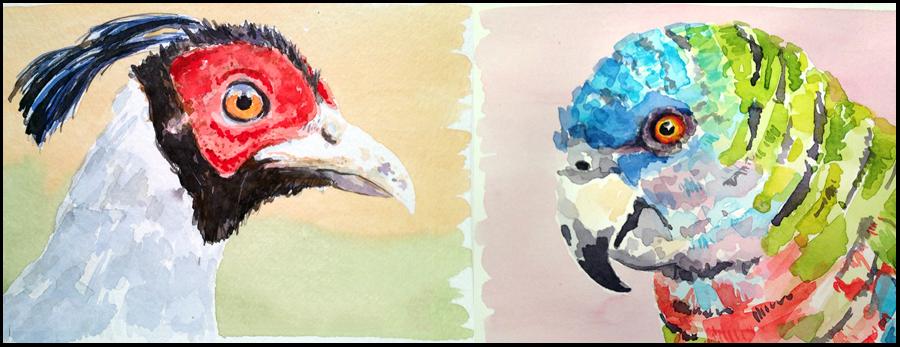 Mattina_Blue_watercolor-birds